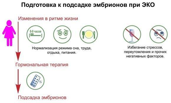 Подготовка к подсадке эмбрионов при ЭКО
