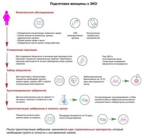 Подготовка к ЭКО женщине