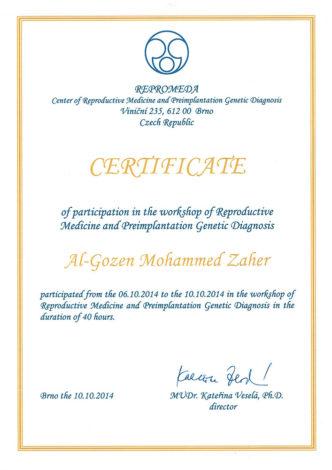 Сертификат О Повышении Квалификации (Чехия)