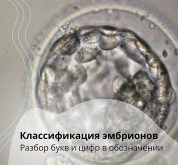 Klassifikatsiya Embrionov